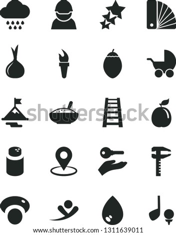 Solid Black Vector Icon Set - powder vector, baby stroller, cloud, color samples, stepladder, drop, a bowl of rice porridge, tamarillo, guava, onion, mashroom, racer, calipers, geolocation, golf