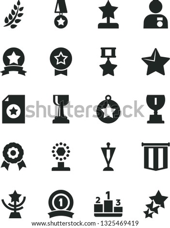 Solid Black Vector Icon Set - star vector, pedestal, medal, laurel branch, award, cup, gold, reward, man with, pennant, ribbon, hero, certificate, flag, three stars