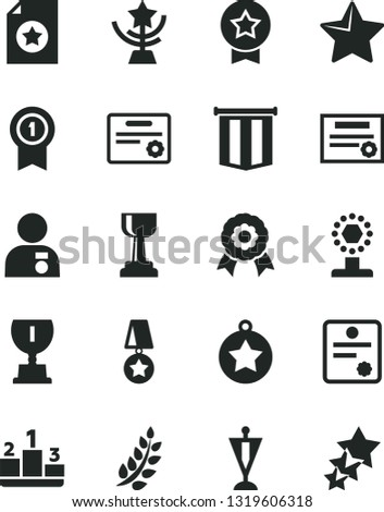 Solid Black Vector Icon Set - star vector, pedestal, medal, patente, laurel branch, award, cup, gold, man with, pennant, certificate, flag, three stars
