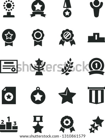 Solid Black Vector Icon Set - star vector, pedestal, medal, patente, winner, laurel branch, cup, ribbon, hero, certificate, pennant flag, three stars