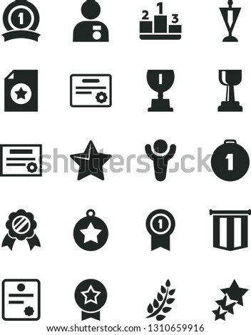 Solid Black Vector Icon Set - star vector, pedestal, patente, winner, laurel branch, award, gold cup, man with medal, pennant, first place, ribbon, certificate, flag, three stars
