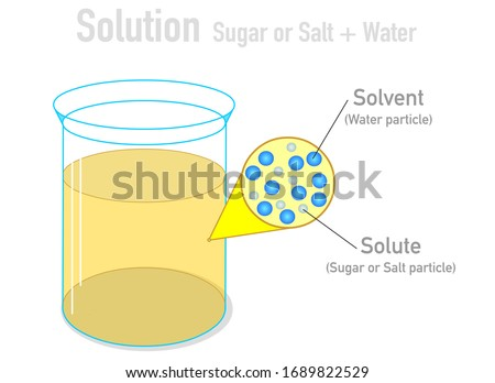 Solvent, solute molecules. Salt, sugar and water mixture. Homogeneous mixture. Solution under microscope. Solution atoms. Molecular structure. Liquid mix.  White background. Illustration Vector