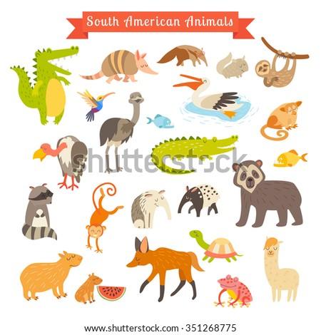 sourth america animals vector...