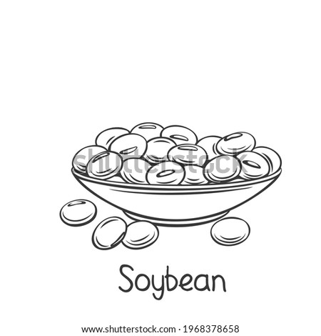 Soybean in bowl outline icon. Drawingn monochrome soy product vector illustration. Dry edamame beans icon.