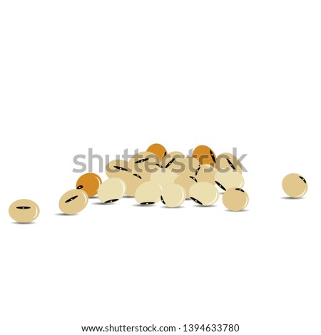 Soybeans Vector illustration. Bodybuilding supplement concept. weight loss and healthy body protein drink soy protein.