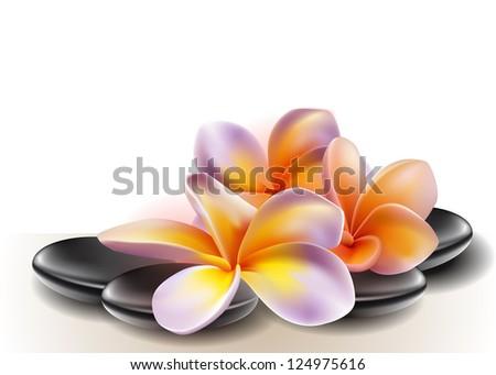 spa concept zen stones and