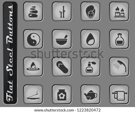 Spa vector web icons on the flat steel buttons