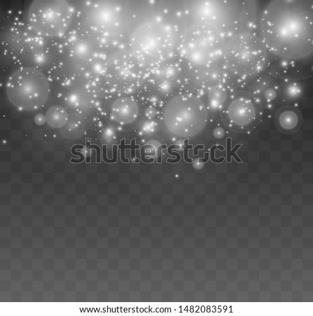 Sparkling dust particles on a transparent background. Christmas theme. White sparkles sparkle with a special light effect.