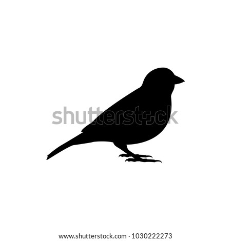 sparrow vector silhouette