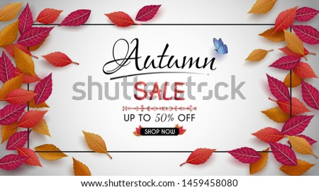 special offer autumn. and sales banner Design. with colorful seasonal fall leaves. and for shopping discount promotion. and frame leaflet or web banner. and used as illustration or background.
