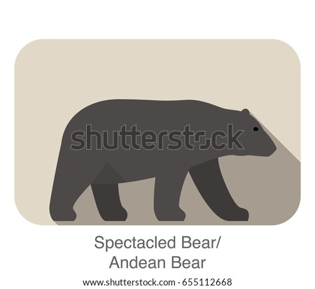 spectacled bear walking side