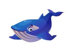 Sperm whale isolated cachalot underwater animal childish cartoon character with big eyes. Vector blue giant fish, marine baby orca shark, swimming cute aqua water wildlife amphibian, funny mascot