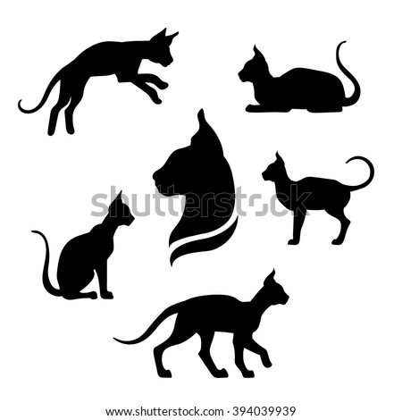 sphynx cat icons and
