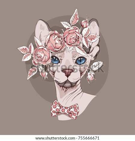 sphynx cat in a rose flower