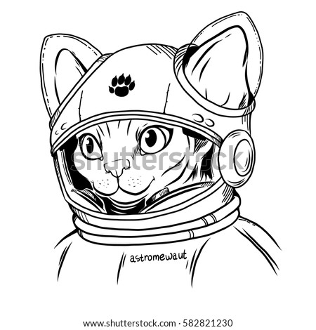 sphynx cat in a spacesuit