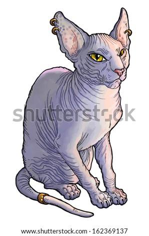 sphynx cat vector funny