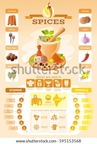spice herb icons healthy food