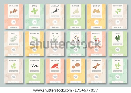 Spices labels. Different aromatic herbs and spices color packaging for culinary, food preparing. Garlic, pepper and basil, spinach and mint organic product for selling vector set. Bags with herbs.