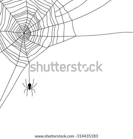 spider and web isolated on