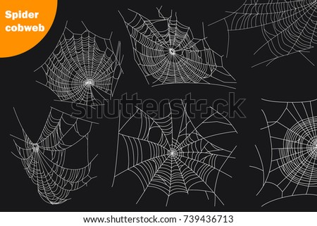 Spider cobwebs various forms set