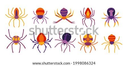 spider halloween cartoon set