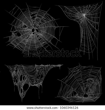 spider web and tangling