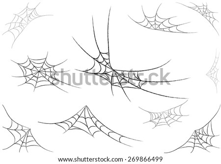 spider web monochrome. vector illustration.