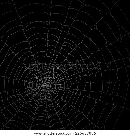 spider web net background