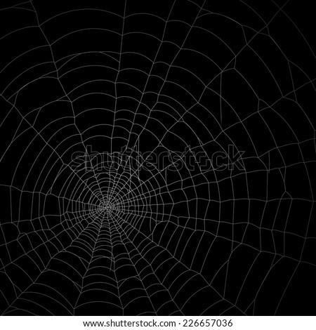 Spider web net background wallpaper