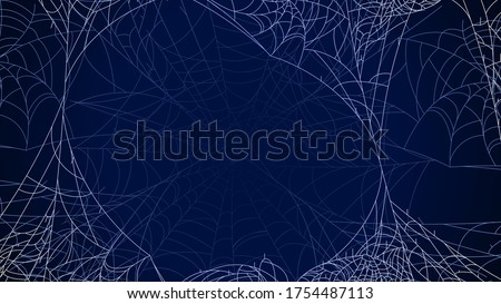 spider web on dark background