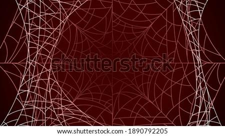 spider web on dark background