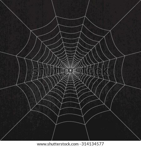 Spider web on dark grunge background