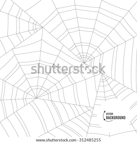 Spider web or cobweb vector background for halloween.