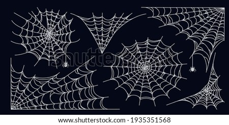 Spider web set isolated on dark background. Spooky Halloween cobwebs with spiders. Outline vector illustration Photo stock ©