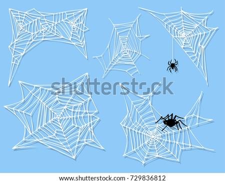 spider web silhouette arachnid