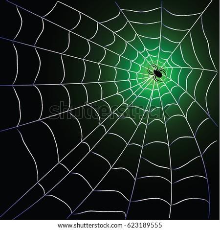 Spider web with spider over black green background design