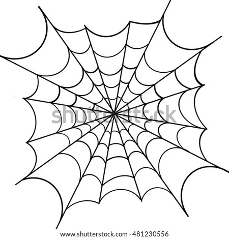 Spiderweb on white background, vector illustration