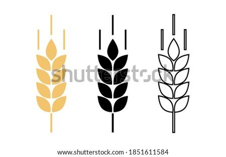 Spike wheat. Bread grain. Wheat logo. Icon bakery. Stalk oat, barley, corn, rye, malt, bran, millet, maize, rice, beer. Harvest seed for flour. Healthy eating. Stalks ear of wheat. Sign crop. Vector