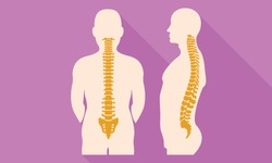 Spine back flat design icon. Illustration of spine back flat design vector icon for web design