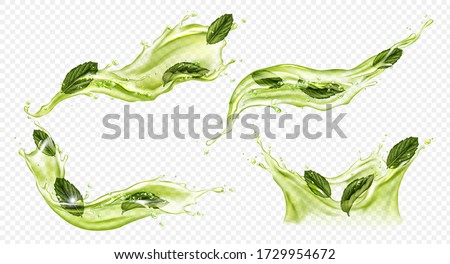 Splash of green tea with mint, matcha isolated on transparent background. Vector realistic set of liquid waves of falling and flowing water, menthol drink, cold tea with peppermint leaves