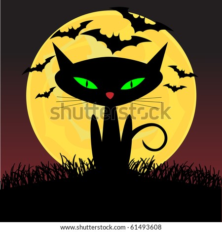 spooky looking black cat with