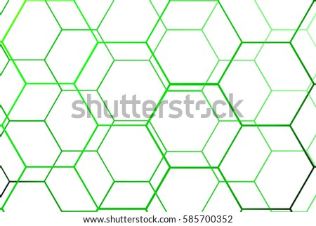 sport background green net