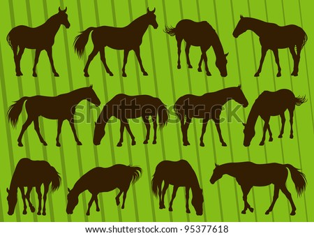 Sport horse silhouettes illustration collection background vector