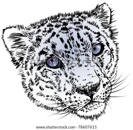 spotty head of a snow leopard