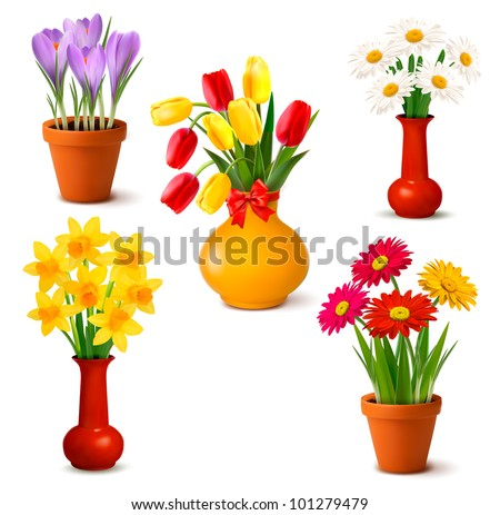 Spring and summer colorful flowers in vases. Vector illustration.