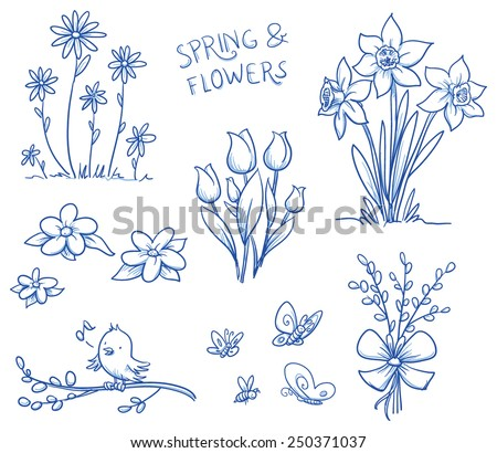 spring and summer flower