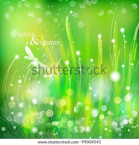 spring and summer grass