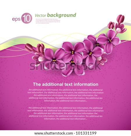 stock-vector-spring-background-for-the-design-of-flowers-vector-illustration