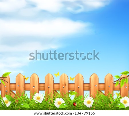spring background  grass and