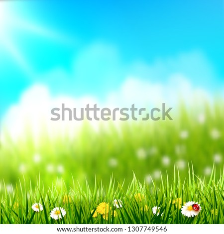 spring background grass with